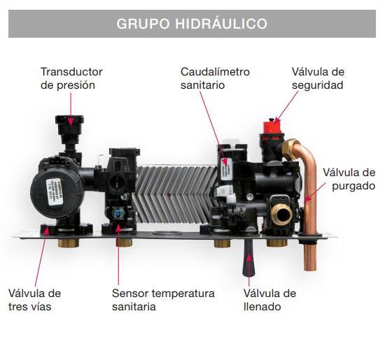 Grupo hidraulico caldera biasi